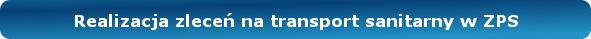 realizacja zleceń na tranzport w zps